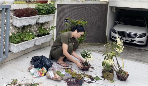 NSƯT Trịnh Kim Chi phụ chồng đại gia làm vườn, hé lộ vườn lan đắt giá trong biệt thự rộng 200m2-2