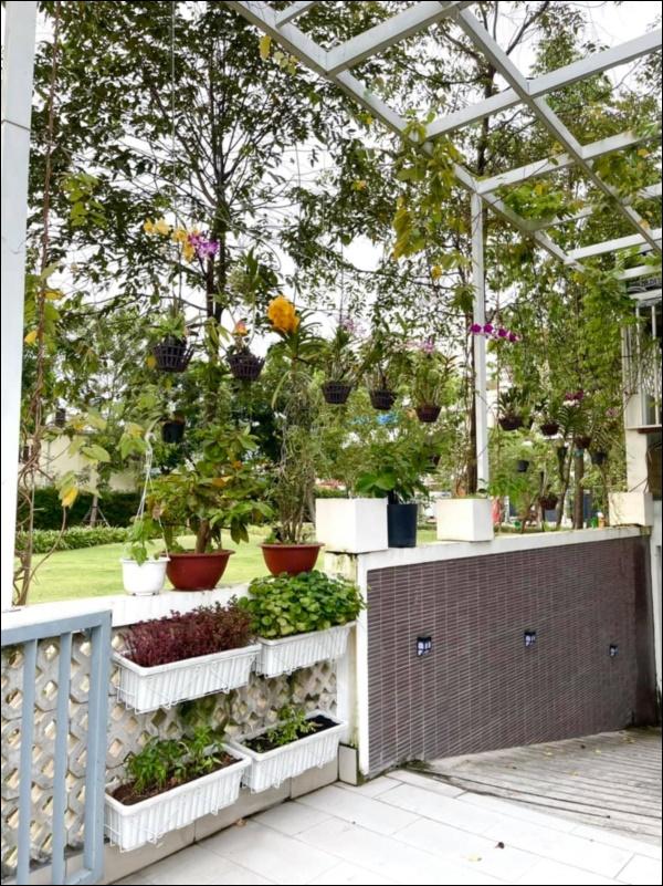 NSƯT Trịnh Kim Chi phụ chồng đại gia làm vườn, hé lộ vườn lan đắt giá trong biệt thự rộng 200m2-8