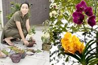 NSƯT Trịnh Kim Chi phụ chồng đại gia làm vườn, hé lộ vườn lan đắt giá trong biệt thự rộng 200m2