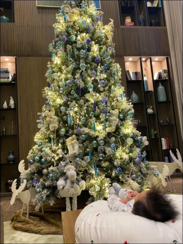 Sao Việt trang hoàng đón Giáng sinh: Đàm Vĩnh Hưng, Ngọc Trinhxa hoa khó ai sánh bằng,nhà Hà Tăng quá đỗi ấm áp,bình yên-11