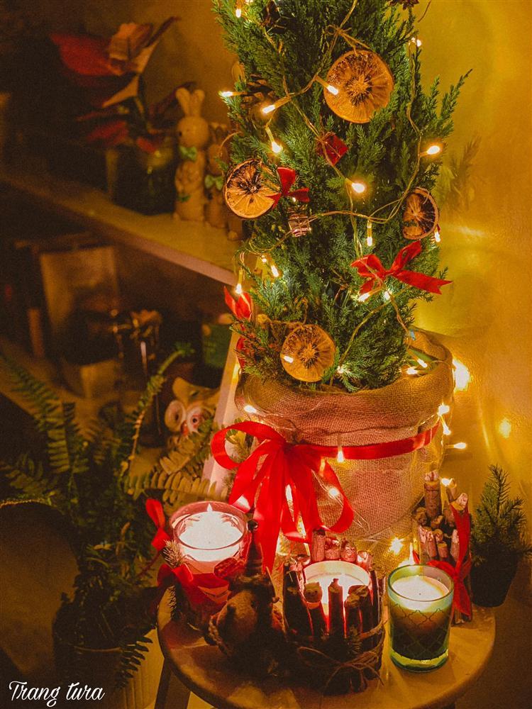 Làm trái cây sấy bằng nồi chiên không dầu siêu tiện, hội chị em dùng làm nước detox, uống trà và lại có thêm đồ decor cây thông Noel-8