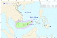 Áp thấp nhiệt đới đã mạnh lên thành cơn bão số 14, gió giật cấp 10, biển động dữ dội