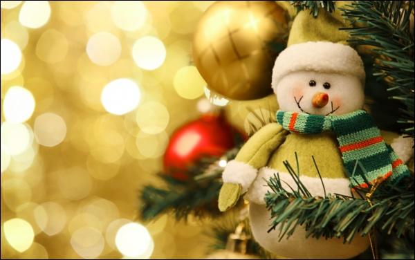 Tìm hiểu ý nghĩa và nguồn gốc đặc biệt của ngày lễ Giáng sinh-2