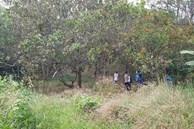 Vụ thi thể phân hủy trên ngọn cây ở Bình Phước: Người dân địa phương hé lộ tình Vụ thi thể phân hủy trên ngọn cây ở Bình Phước: Người dân địa phương hé lộ tình tiết bất ngờ