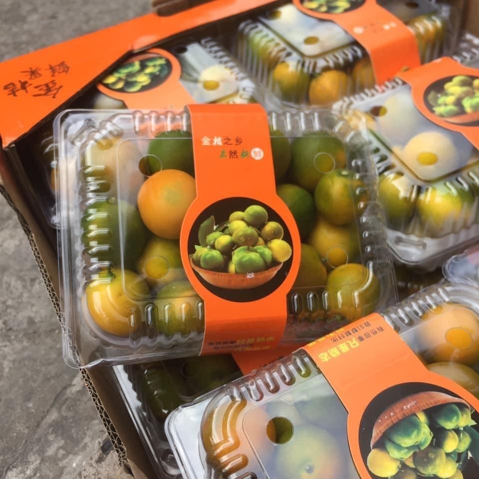 Loại quất lạ không có nước, đặc ruột giòn ngọt tràn về chợ Việt-1