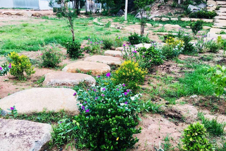 Vượt 400km đến thăm chồng, vợ sững sờ thấy cảnh trong vườn-1
