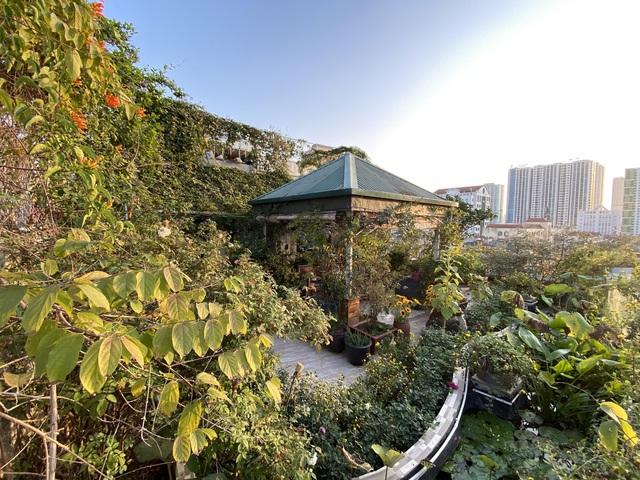 Vườn hoa 200m2 trên sân thượng, đẹp như tiên cảnh của mẹ đảm Hà thành-1