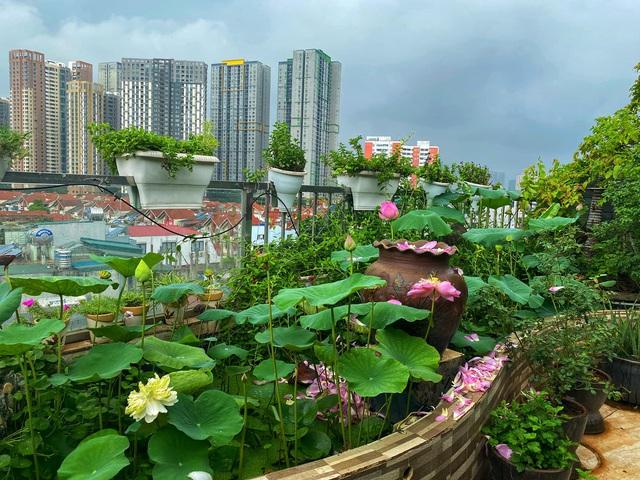 Vườn hoa 200m2 trên sân thượng, đẹp như tiên cảnh của mẹ đảm Hà thành-6