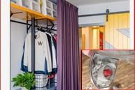 Mấy ngày không dọn mà những sợi lông từ đâu xuất hiện nhiều trong nhà, làm sao để hút sạch?