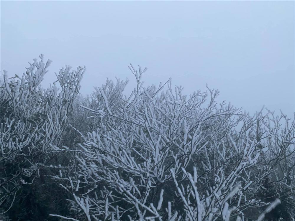 Clip: Rạng sáng nay (11/1), hội mê phượt xôn xao tuyết đã rơi tại Sapa-2