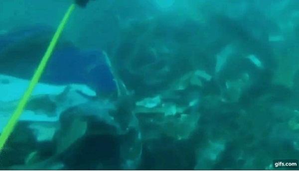 Video cận cảnh cảnh tượng hỗn độn dưới đáy biển nơi máy bay Indonesia rơi: Phương tiện bị phá hủy hoàn toàn, mảnh vỡ và thi thể người nằm rải rác-2