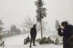 Đào Nhật Tân có nguy cơ mất mùa vì rét đậm kéo dài-1