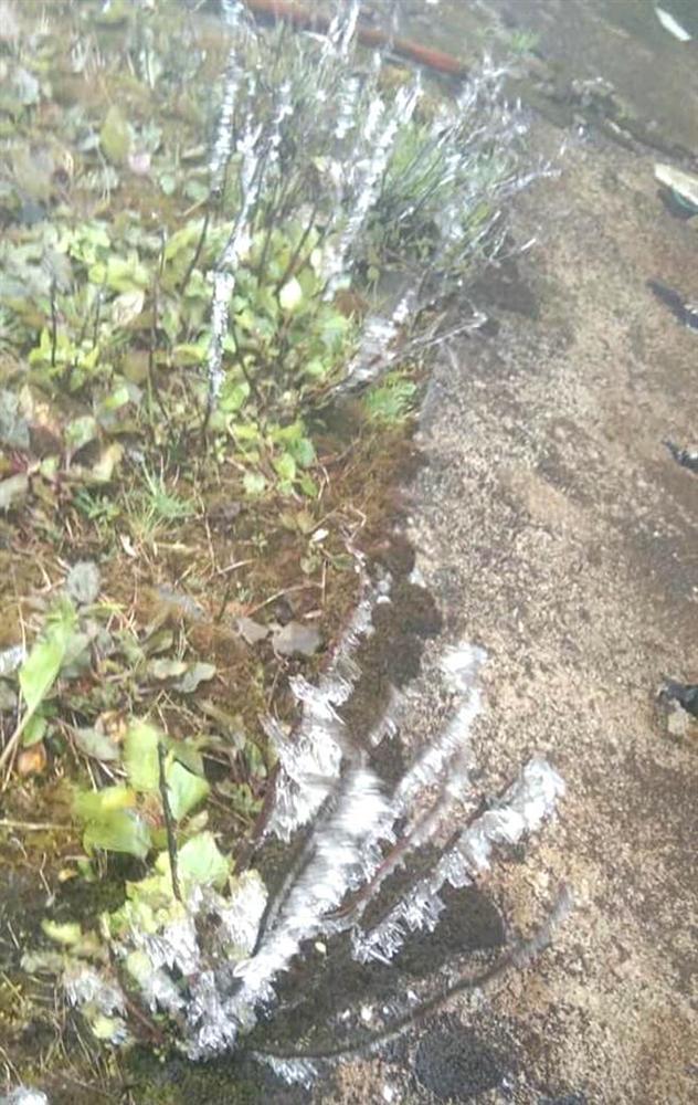 Nhiều nơi ở Nghệ An xuất hiện băng giá, cây cối, vật dụng đều bị đóng băng-10