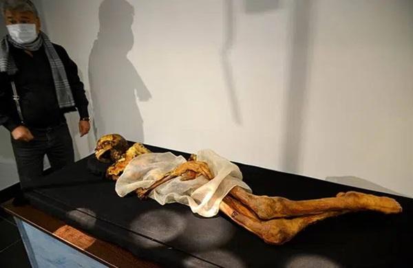 Xác ướp công chúa 2.500 tuổi có hình xăm điệu nghệ khiến giới khoa học bối rối, người dân cương quyết không công khai ảnh với lý do khó hiểu-1