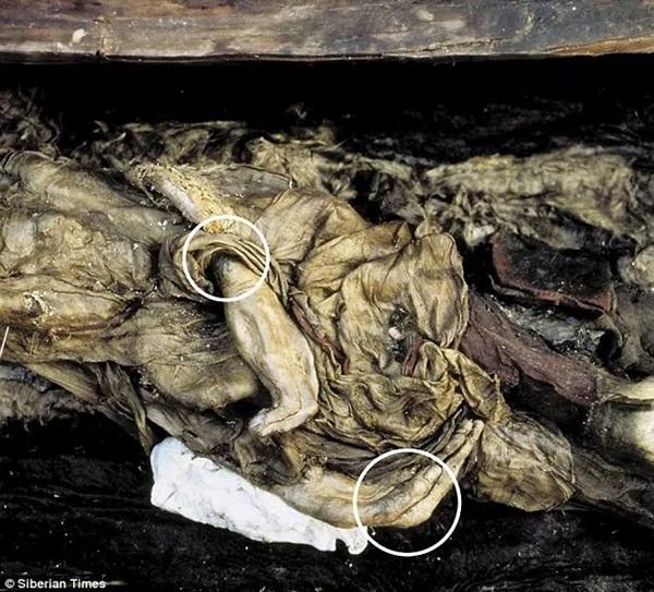 Xác ướp công chúa 2.500 tuổi có hình xăm điệu nghệ khiến giới khoa học bối rối, người dân cương quyết không công khai ảnh với lý do khó hiểu-5