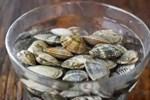 Tuyển tập bí kíp cho hội chị em mê nghêu sò ốc hến: Dắt túi ngay để khỏi cần băn khoăn mỗi lần vào bếp!