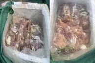 Tiêu hủy 3,5 tấn thịt thối ở Nghệ An