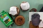 Đà Nẵng: Phát hiện 3 hũ nghi đựng tro cốt bỏ quên ở quán ăn ven đường, bên trong là các thai nhi chưa tựu hình