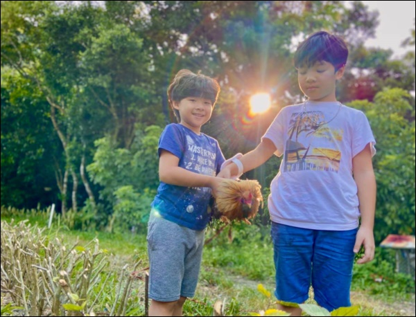 Đẻ 2 con trai như Đan Lê đúng là mát lòng mát dạ, vừa học giỏi lại tình cảm, khéo ăn nói khiến mẹ tan chảy-6