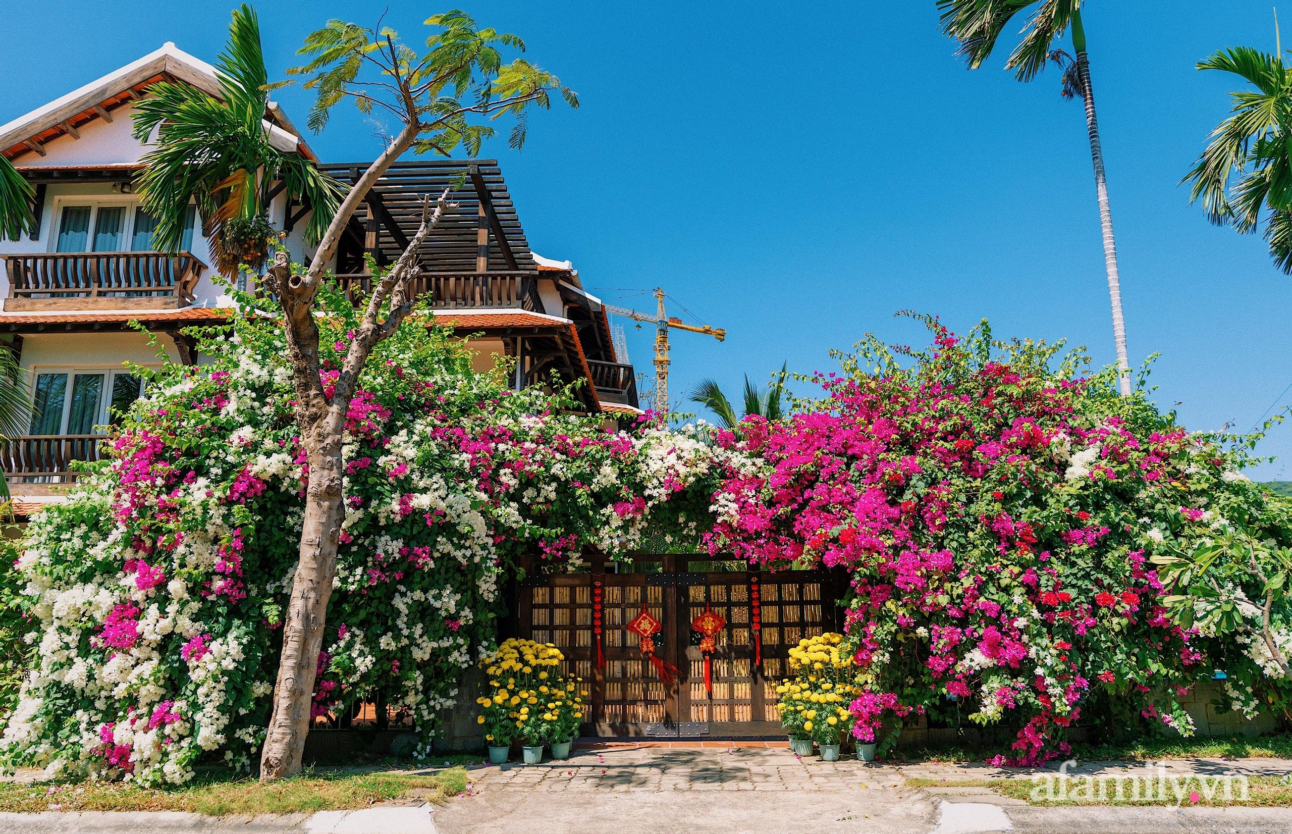 Căn nhà vườn xây 10 năm vẫn đẹp hút mắt với nội thất gỗ và cây xanh quanh nhà ở Nha Trang-1