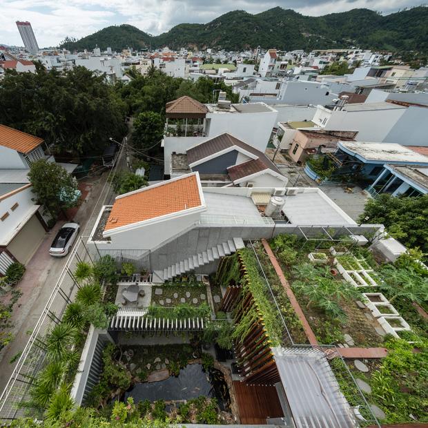 Nhà phố được cải tạo thành nơi trồng rau nuôi cá đúng chất, khu vườn trên mái là mơ ước của nhiều gia đình-1