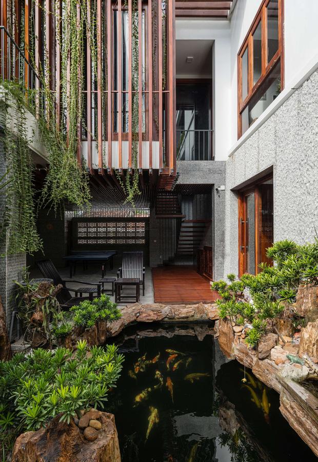 Nhà phố được cải tạo thành nơi trồng rau nuôi cá đúng chất, khu vườn trên mái là mơ ước của nhiều gia đình-4