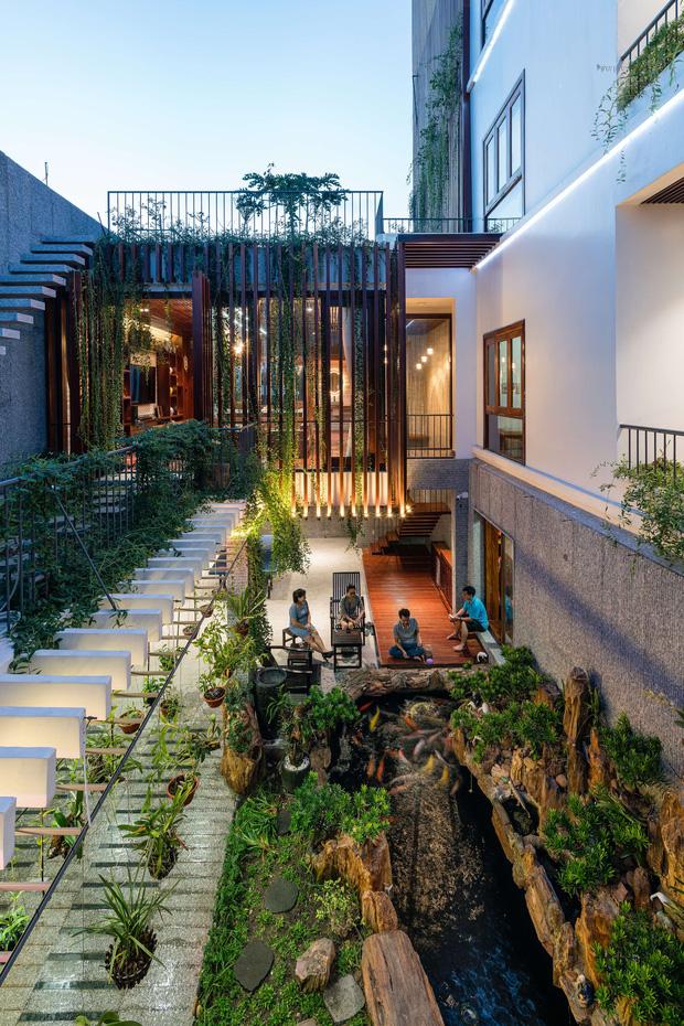 Nhà phố được cải tạo thành nơi trồng rau nuôi cá đúng chất, khu vườn trên mái là mơ ước của nhiều gia đình-5