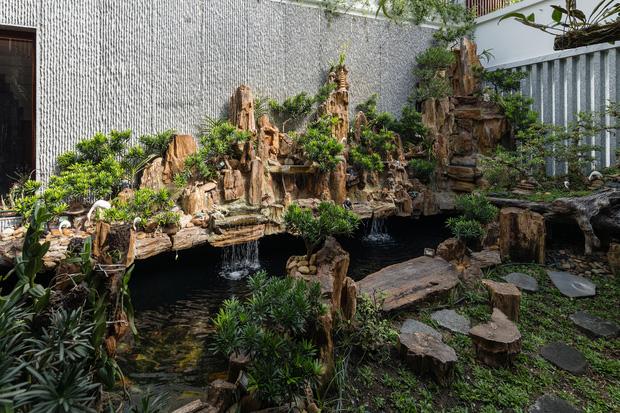Nhà phố được cải tạo thành nơi trồng rau nuôi cá đúng chất, khu vườn trên mái là mơ ước của nhiều gia đình-6