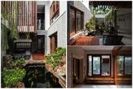 Nhà phố được cải tạo thành nơi trồng rau nuôi cá đúng chất, khu vườn trên mái là mơ ước của nhiều gia đình