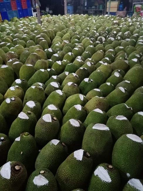 Hàng nghìn quả mít bị cắt đầu, bôi chất trắng trước khi mang bán, mục đích là gì?-3