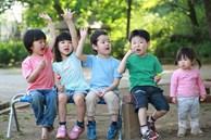 Thực hiện 3 kiên trì này trước khi trẻ lên 5 tuổi, có thể cải thiện trí nhớ và IQ