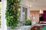 """Cuối năm đặt cây phong thủy vào bếp """"mở cửa kho vàng"""" trong nhà, sang năm gia chủ làm gì cũng giàu nứt vách"""