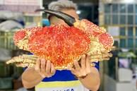 Cua biển 'khổng lồ' giá chục triệu đồng/con, đại gia không tiếc mua về ăn