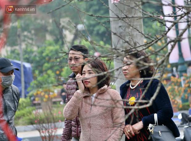 """Hà Nội: Những cành đào rừng Sơn La được dán tem đầu tiên rủng rỉnh"""" xuống phố chờ khách mua về chơi Tết-17"""