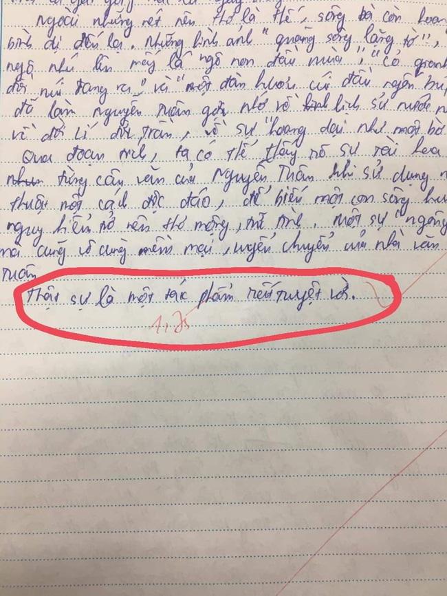 Nam sinh viết 1 dòng cuối cùng vào bài Văn mà khiến giáo viên tích ngay dấu đỏ, dân mạng đọc xong cũng phải nể phục-1