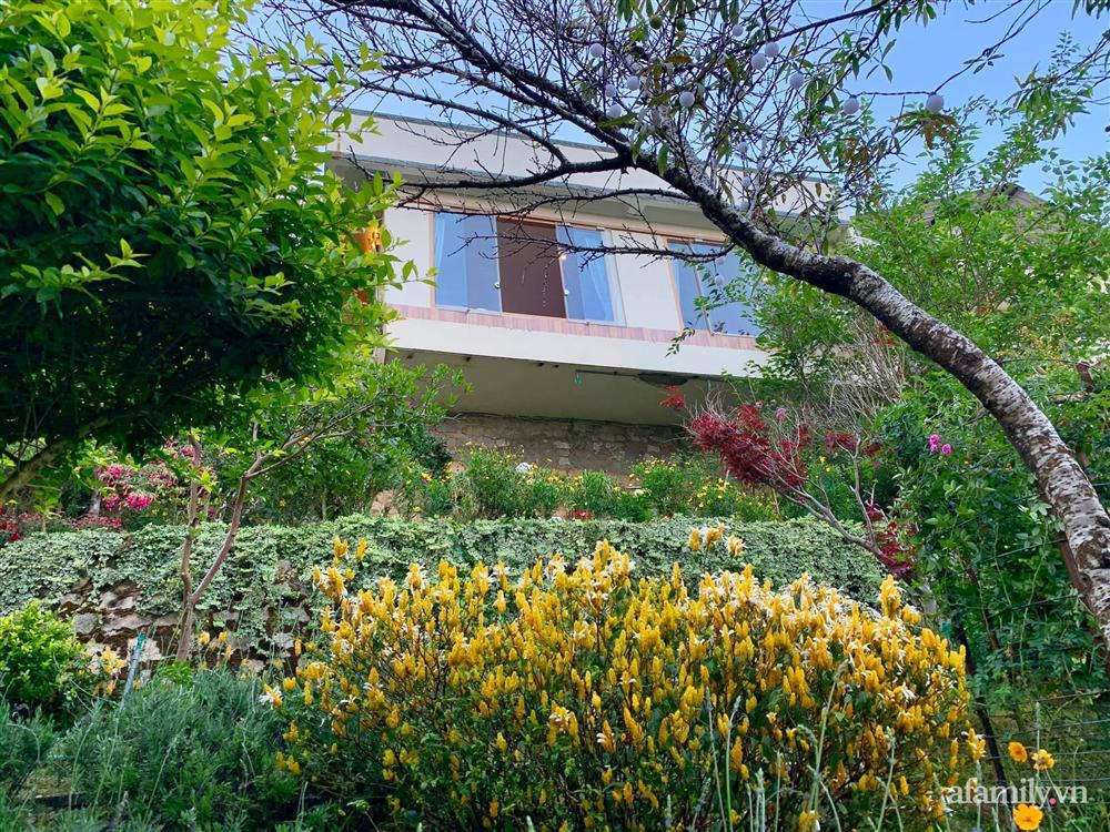 Ngôi nhà nhỏ yên bình sở hữu khu vườn đẹp như xứ sở thần tiên giữa lưng chừng đồi ở Đà Lạt-1