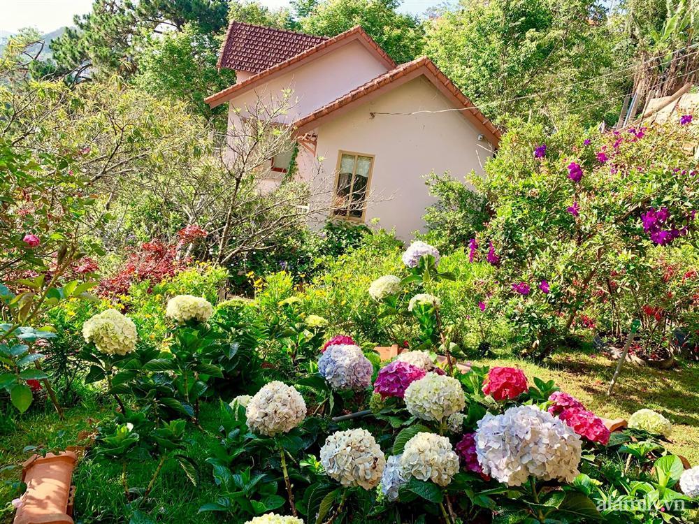 Ngôi nhà nhỏ yên bình sở hữu khu vườn đẹp như xứ sở thần tiên giữa lưng chừng đồi ở Đà Lạt-4