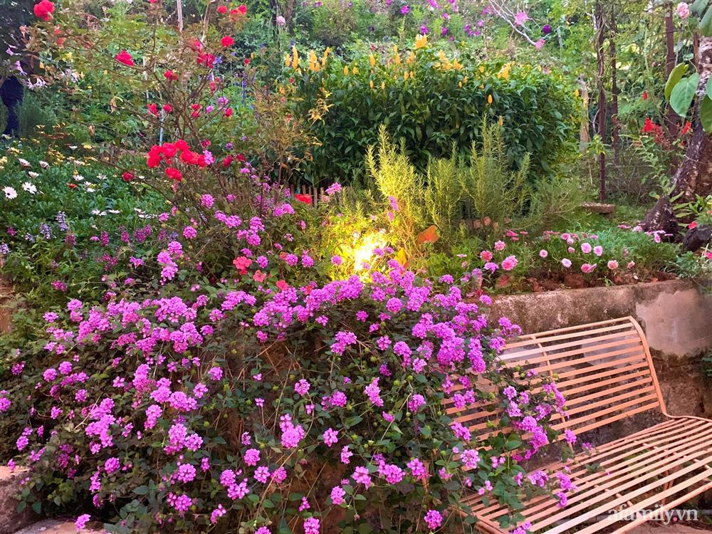 Ngôi nhà nhỏ yên bình sở hữu khu vườn đẹp như xứ sở thần tiên giữa lưng chừng đồi ở Đà Lạt-11