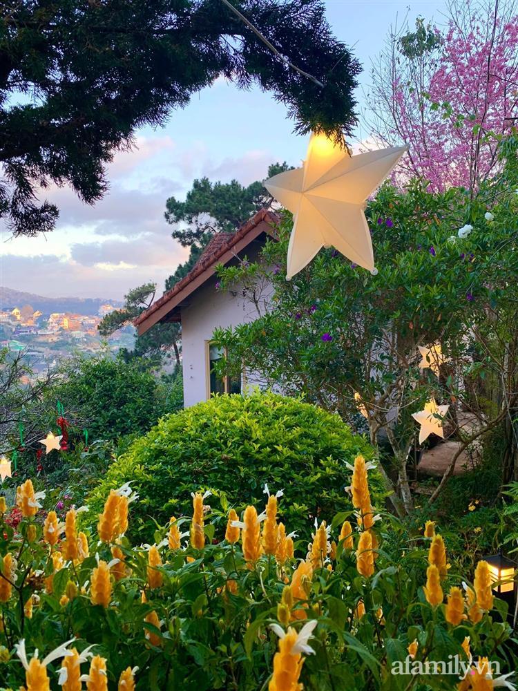 Ngôi nhà nhỏ yên bình sở hữu khu vườn đẹp như xứ sở thần tiên giữa lưng chừng đồi ở Đà Lạt-14