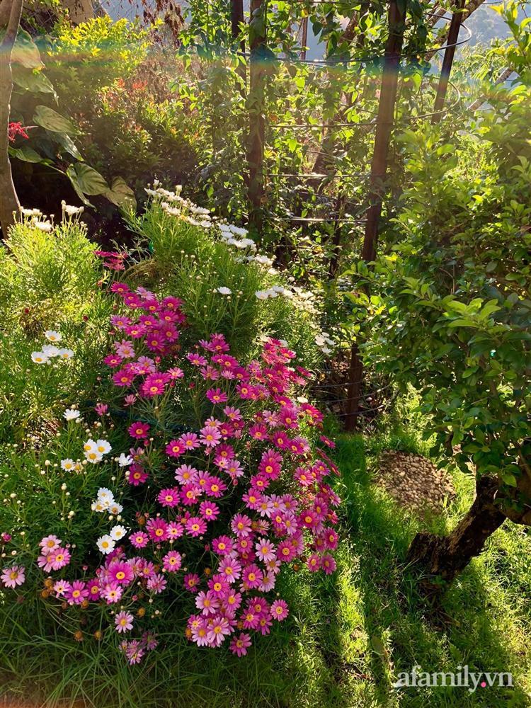 Ngôi nhà nhỏ yên bình sở hữu khu vườn đẹp như xứ sở thần tiên giữa lưng chừng đồi ở Đà Lạt-15