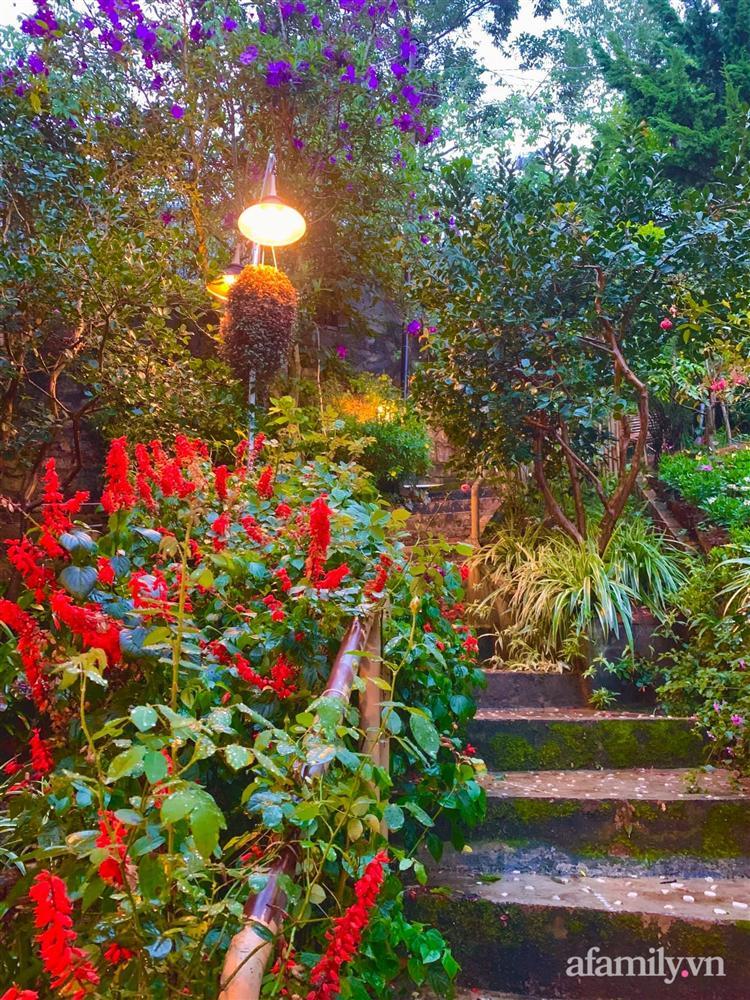 Ngôi nhà nhỏ yên bình sở hữu khu vườn đẹp như xứ sở thần tiên giữa lưng chừng đồi ở Đà Lạt-16