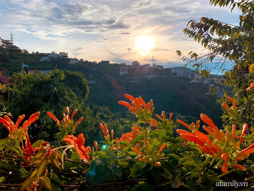 Ngôi nhà nhỏ yên bình sở hữu khu vườn đẹp như xứ sở thần tiên giữa lưng chừng đồi ở Đà Lạt-21