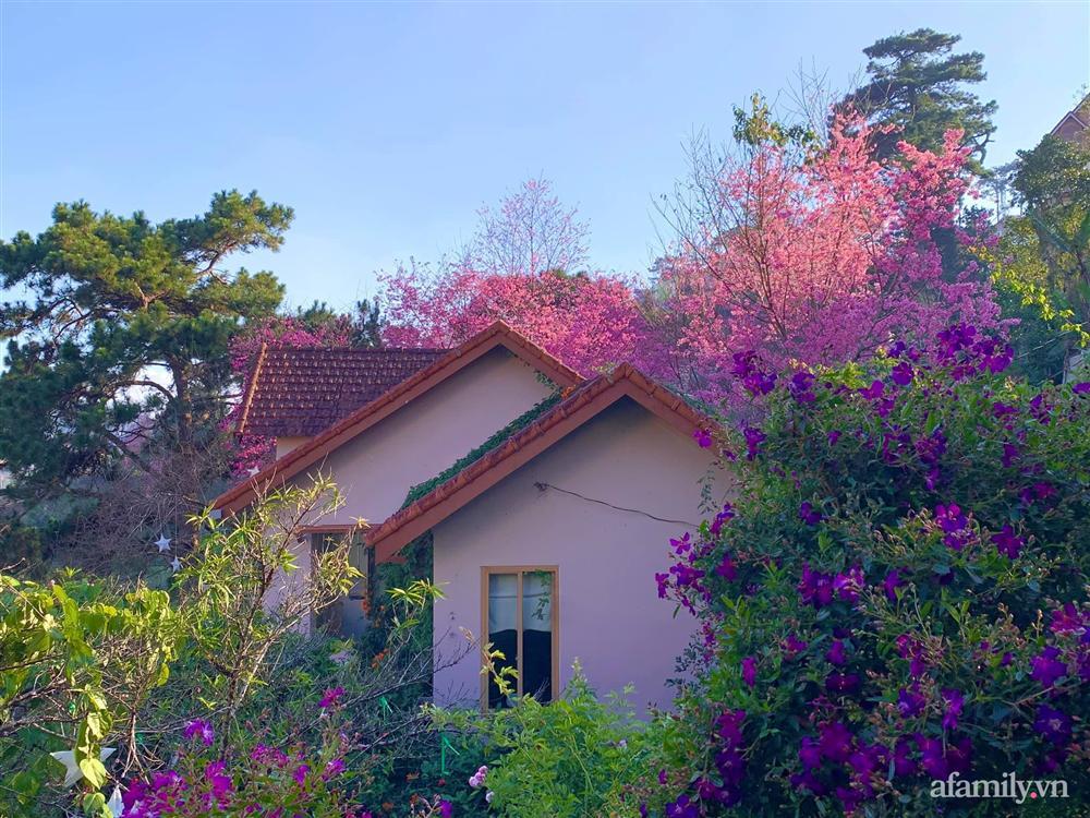 Ngôi nhà nhỏ yên bình sở hữu khu vườn đẹp như xứ sở thần tiên giữa lưng chừng đồi ở Đà Lạt-23