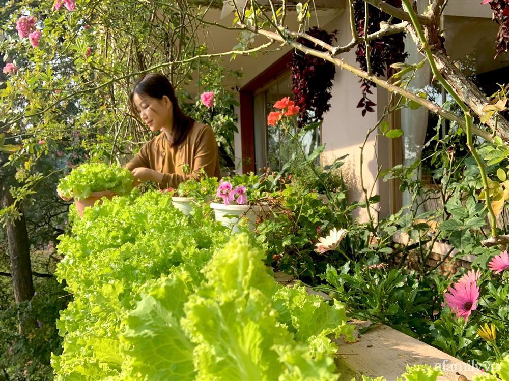 Ngôi nhà nhỏ yên bình sở hữu khu vườn đẹp như xứ sở thần tiên giữa lưng chừng đồi ở Đà Lạt-28
