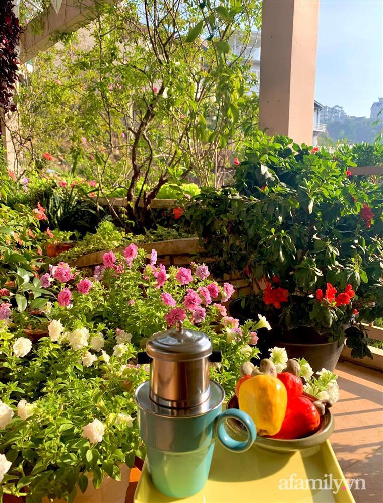 Ngôi nhà nhỏ yên bình sở hữu khu vườn đẹp như xứ sở thần tiên giữa lưng chừng đồi ở Đà Lạt-31