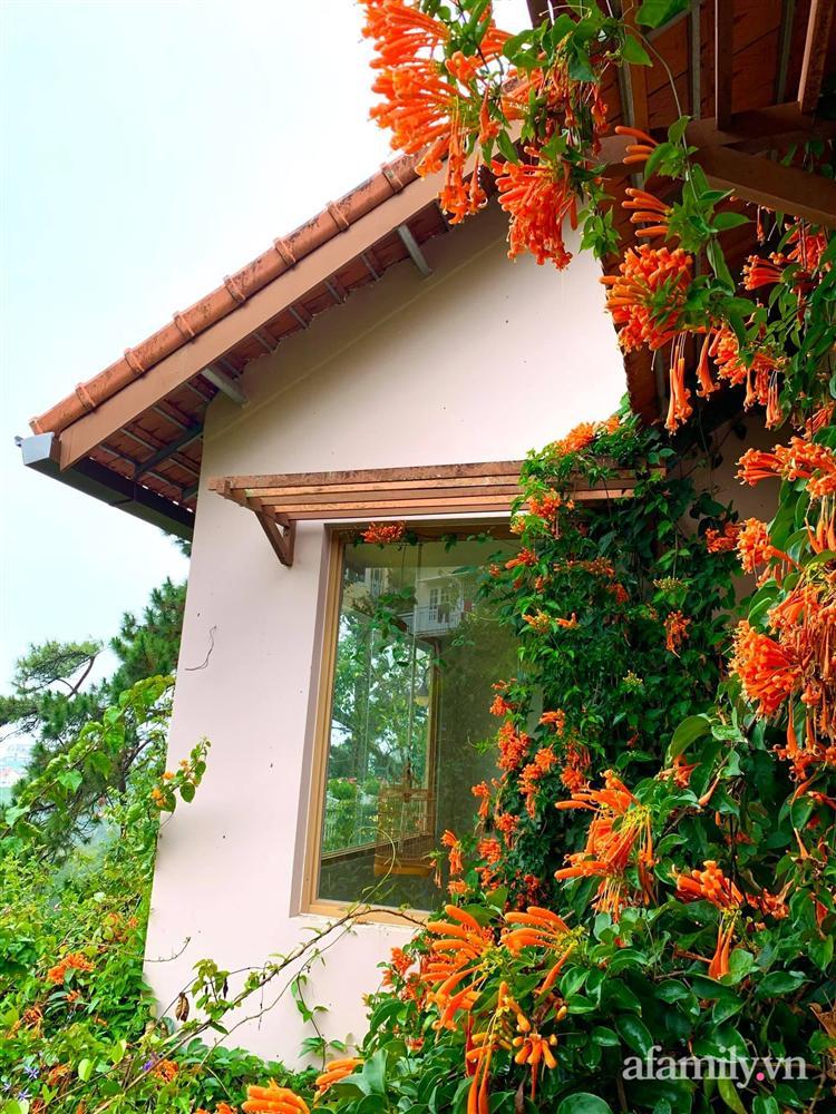 Ngôi nhà nhỏ yên bình sở hữu khu vườn đẹp như xứ sở thần tiên giữa lưng chừng đồi ở Đà Lạt-35