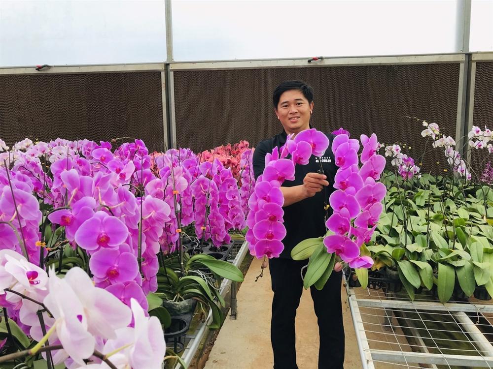 Hoa tươi Trung Quốc lấn át hoa Việt dịp cận Tết-3