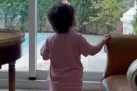 Phượng Chanel chia sẻ hình ảnh bé gái hơn 1 tuổi, cư dân mạng lập tức đoán đây là con gái Quách Ngọc Ngoan?