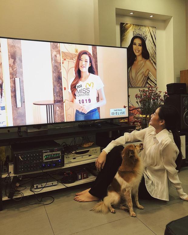 Khám phá cuộc sống của Hoa hậu Hoàn vũ Khánh Vân trong căn hộ cao cấp-3