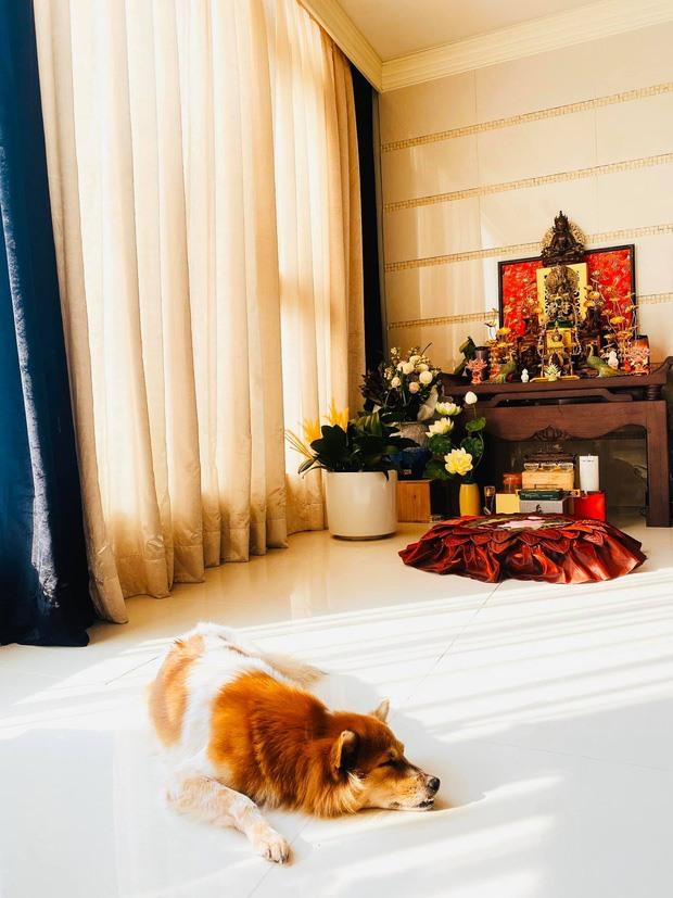 Khám phá cuộc sống của Hoa hậu Hoàn vũ Khánh Vân trong căn hộ cao cấp-8